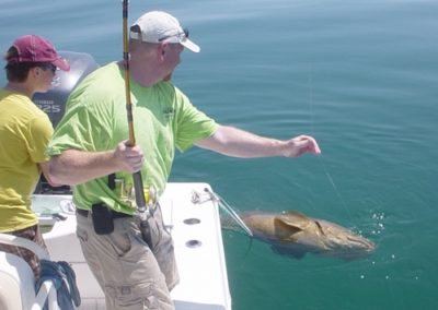 Big Grouper